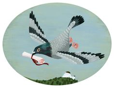 messenger pigeon