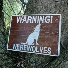 I pass the werewolf sign again. I'm going in circles, but I go a different way each time, coming to the same tree, and I never turn. It was frustrating. Suddenly I hear rustling and I whip around, holding my daggers close.