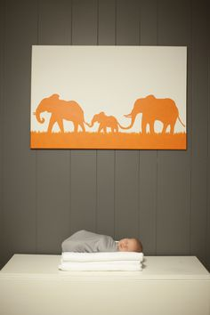 I so want an elephant themed girl's room if I have a girl someday! // Modern Girl's Nursery | caitlin elizabeth photography