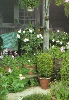 Tasha tudor's home - used lots of potted plants (lots of perennials)