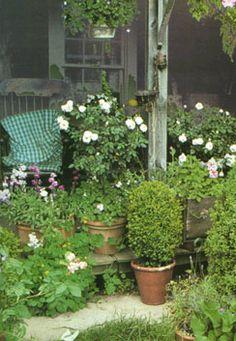 Tasha tudor's home - used lots of potted plants (lots of perennials)