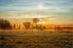 Sonnenaufgang Poster von Cornelia Dettmer