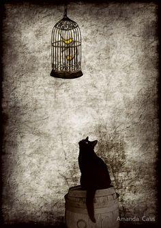 Amanda Cass...   Kai Fine Art
