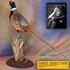THREE SIDED TAPE VOLUME TWO by LIL UGLY MANE