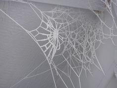 Frozen Spider Web                                                                                                                                                                                 More