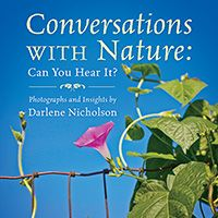Conversations With Nature: Can You Hear It? (published by Outskirts Press) Education Degree, Education System, University Of Maryland, Free Advice, Spiritual Inspiration, Art Therapy, Natural World, Self Help, How To Introduce Yourself