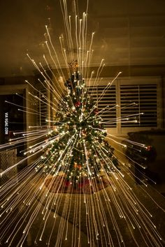 When you zoom out while taking picture of a Christmas tree
