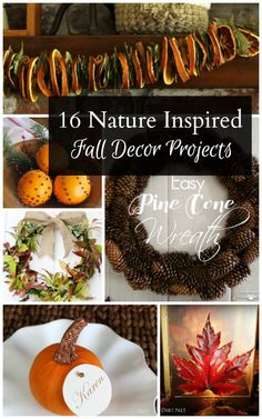 Get creative with 16 different nature inspired fall decor projects, using items found around the yard or purchased inexpensively at a local store.