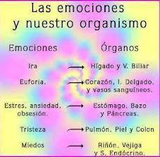 emociones ligadas a nuestro cuerpo