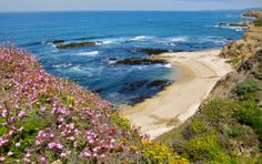 Half Moon Bay Trails Adventure Guide | Mill Rose Inn | Half Moon Bay, CA #trails #hiking #halfmoonbay