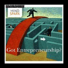 GOT ENTREPRENEURSHIP?  http://www.mindsparkignite.com/news/got-entrepreneurship/