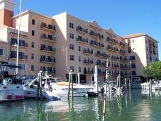 from the Marina at back of Madeira Bay Resort