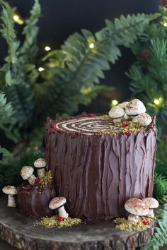 Our Low FODMAP Souche de Noël is a twist on the classic Bouche de Noel. Flavors of chocolate and espresso rolled up to look like a Yule Log, as a stump! Chocolate Yule Log Recipe, Chocolate Log, Chocolate Roll Cake, Chocolate Sponge Cake, Christmas Yule Log, French Christmas, Christmas Desserts, Mary Berry Yule Log, Tree Stump Cake