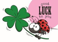 Succes / Goed gedaan kaart - funny-mail-good-luck-to-you Exam Good Luck Quotes, Exam Wishes Good Luck, Best Wishes For Exam, Good Luck For Exams, Good Luck New Job, All The Best Wishes, Get Well Wishes, Good Luck To You, Baby Art Crafts