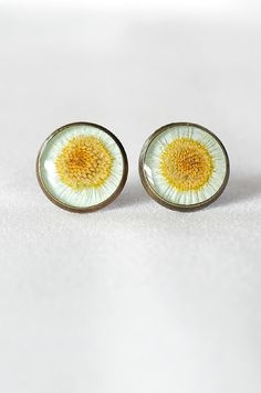 Camomile stud earrings Daisy earrings Free shipping Etsy Daisy jewelry romantic Real flower earrings Terrarium Jewelry yellow Post earrings