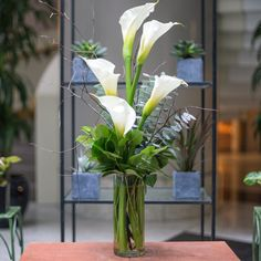 Send the Calla Lily Elegance bouquet of flowers from Louis Barry Florist in Boston, MA. Local fresh flower delivery directly from the florist and never in a box! Calla Lily Centerpieces, Wedding Centerpieces, Wedding Bouquets, Wedding Decorations, Flower Arrangement Designs, Unique Flower Arrangements, Fresh Flower Delivery, Same Day Flower Delivery, Spring Wedding Flowers