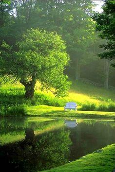Lake Bench, Burgundy, France