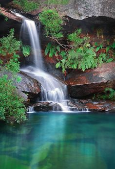 Waterfall by -yury- on flickr.       Upper Gledhill Falls in Ku-ring-gai Chase National Park, Sydney, Australia