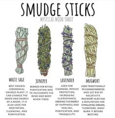 A little background on herbs you can use to smudge