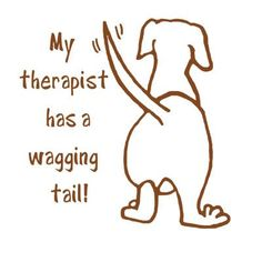 Yes he does <3; Well, mine has a wagging stub of a tail, but it still wags.