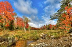 An Adirondack autumn day on a Moose River tributary near Old Forge, New York. #ADK #Autumn