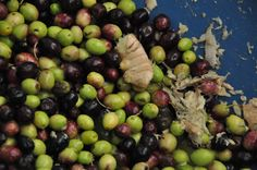 olives with ginger Citrus Oil, Olives, Fruit, Food, The Fruit, Meals, Yemek, Eten