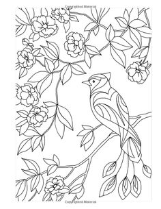 Coloring Books For Adults Volume 40 Stress Relieving And Relaxing Patterns, Adult Coloring Books Series By ColoringCraze Art Drawings For Kids, Outline Drawings, Bird Drawings, Colorful Drawings, Coloring Pages To Print, Animal Coloring Pages, Coloring Book Pages, Glass Painting Patterns, Fabric Painting