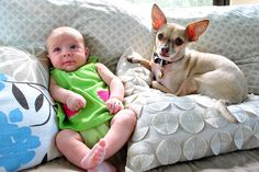Great tips from YoungHouseLove on how to introduce babies to furbabies. Awesome advice in the comment section too!