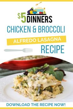 This chicken and lasagna alfredo bake recipe is a little twist on traditional lasagna! It's quick and easy as it's ready to enjoy in as little as 40 minutes. Plus, it's gluten free compliment! Keep on reading to see the full recipe. #lasagna #dinnerrecipes #chickenrecipes Best Pasta Recipes, Easy Chicken Recipes, Free Recipes, Alfredo Bake Recipe, Alfredo Lasagna, Chicken Broccoli Alfredo, Traditional Lasagna, Healthy Dishes, Food Allergies