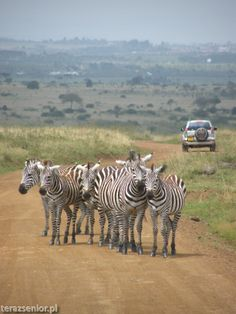 Park Narodowy Tsavo