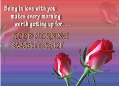 Discover most beautiful good morning images and wallpaper with love quotes. Here are some awesome good morning messages ideas for her or him. Good Morning Love, Happy Good Morning Images, Good Morning Images Download, Morning Love Quotes, Good Morning Picture, Good Morning Messages, Good Morning Greeting Cards, Good Morning Greetings, Good Morning Wishes