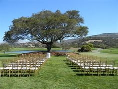 Outdoor Event Lawn wedding ceremony at Nicklaus Club - Monterey. Wedding Ceremony, Wedding Venues, Reception, Old Oak Tree, Santa Lucia, Outdoor Events, Lawn, Vineyard, Wedding Flowers