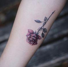 Gorgeous rose by Tattooist Flower