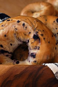 Homemade Bagels Recipe that shows how easy to make your own New York Style bagel at home. This recipe is for cinnamon dried fruit bagel and we give tips for variations. Easy to make pizza bagel or even a delicious onion or garlic bagel. Bread Machine Recipes, Bread Recipes, Cooking Recipes, Types Of Bagels, Cinnamon Bagels, Cinnamon Raisin Bagel, How To Make Bagels, Blueberry Bagel, Homemade Bagels