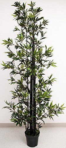 Faux Bamboo Tree, Black Trunk, Green Leaves, 8 Feet High *** Learn more by visiting the image link.