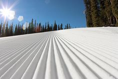Colorado skiing powder!