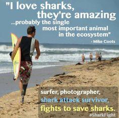 Estes é um surfista de verdade!    This is a real surfer!