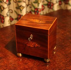 Antique Tea Caddy, Georgian Mahogany (English) from the Sheraton period.  With inlaid oval pattern of sea shell to front and top, with boxwood edging. Via onlinegalleries.com