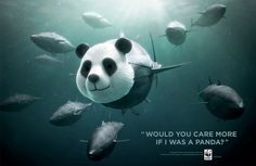 32 Powerful Advertising Campaigns that Combat the Harsh Realities of Animal Welfare and Rights