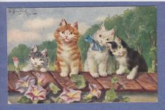 1213 Cats Vtg PC A s Sperlich 4 Sweet Cats Sitting on A Wall Flowers Series 734 | eBay