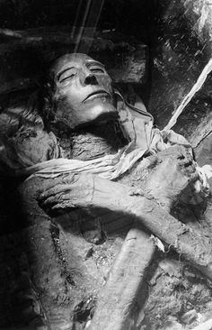 Mummified remains of Pharaoh Seti I, Dynasty, one of the best-preserved Egyptian mummies, as photographed by Emil Brugsch Seti I was the father of Ramses the Great (Rameses II). He was the father of Ramses the Great (Rameses II). Ancient Mysteries, Ancient Artifacts, Ancient Egypt, Ancient History, Egyptian Mummies, Egyptian Art, Egypt Mummy, Arte Tribal, Valley Of The Kings