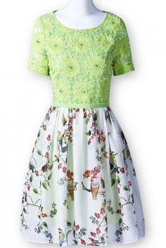 Green Contrast Lace Short Sleeve Floral Chiffon Dress pictures