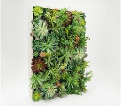 Wicker Park Indoor/Outdoor Faux Succulent Wall Decor in Wood Frame Plant Wall Decor, Fake Plants Decor, House Plants Decor, Faux Plants, Hanging Plants, Hanging Gardens, Outdoor Gardens, Indoor Outdoor, Indoor Gardening