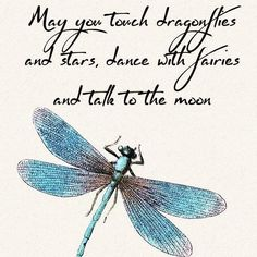 Quotes & Sayings,Quotations With Images . The Words, Great Quotes, Quotes To Live By, In Memory Quotes, Time Quotes, Dragonfly Quotes, Dragonfly Symbolism, Dragonfly Images, Dragonfly Meaning Spiritual