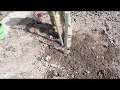 Посадка плодовых и ягодных деревьев..mp4 - YouTube