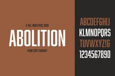 Abolition Family by Fort Foundry on Creative Market