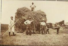 boeren van vroeger en nu - Google zoeken