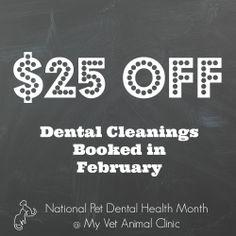 Feb Pet Dental Health Month Facebook Profile Picture