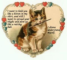 10 Bad Valentine's Day Poems Written By Cats