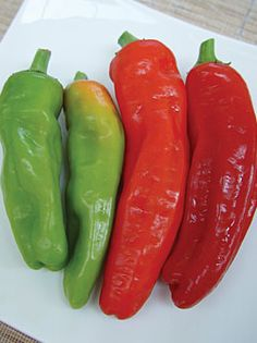 Marconi Peppers - sweet italian frying peppers